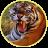 Тигр50