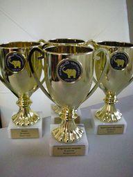 награды_командам,_призёрам__командных_зачётов__Гамблера,_сезон2009-2010